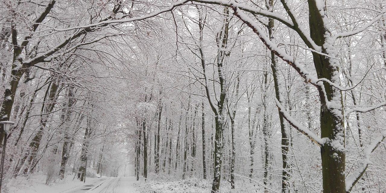 Circolazione stradale in periodo invernale e in caso di emergenza neve